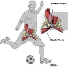 Adductor Kicking forces